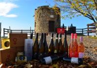 Znojemské vinobraní vás pozve do historické krčmy