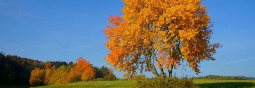 Podzimní hory zážitků na Dolní Moravě